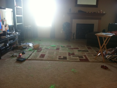 Poor Bhan's living room after Hurricane Li'l T